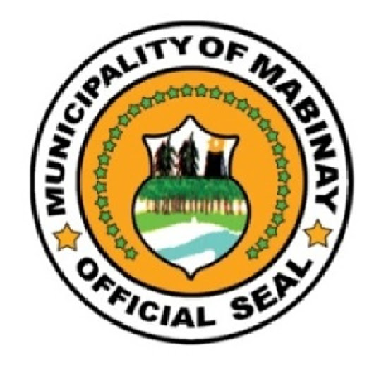 Image result for Mabinay municipal logo