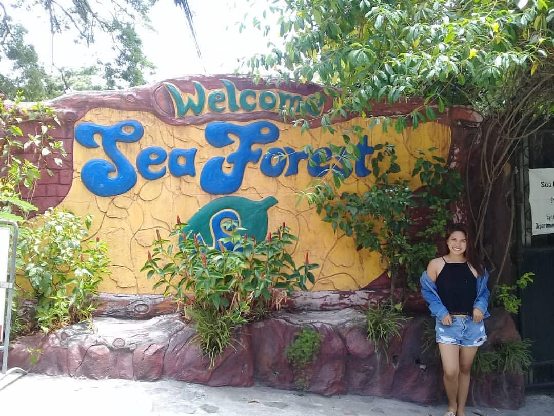 Image result for sea forest sibulan logo