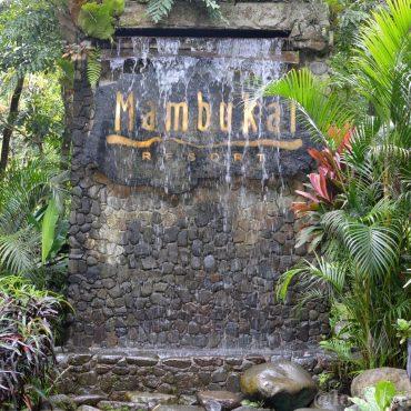 Mambukal