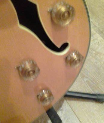 Joe Pass Emperor II Electric Guitar