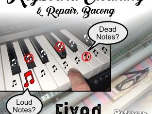 Electronic Keyboard Cleaning & Repair