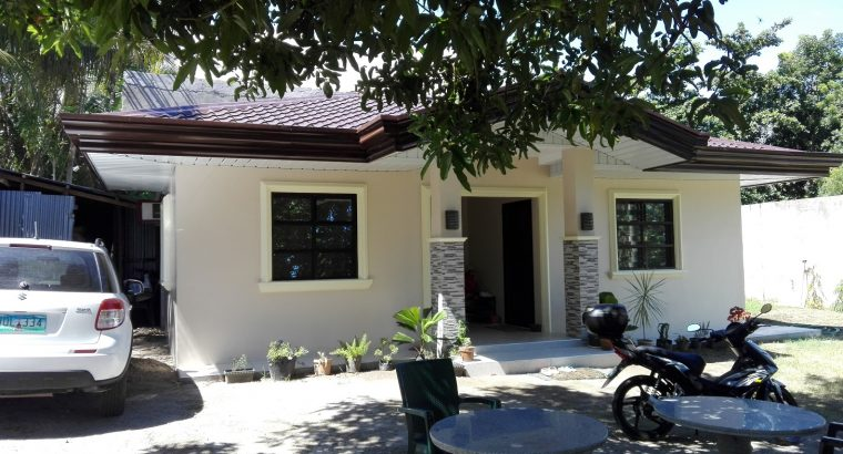 Investment Property in Bacong