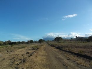 OCEAN VIEW LOT FOR SALE AT THE BACK OF BRAVO GOLF HOTEL