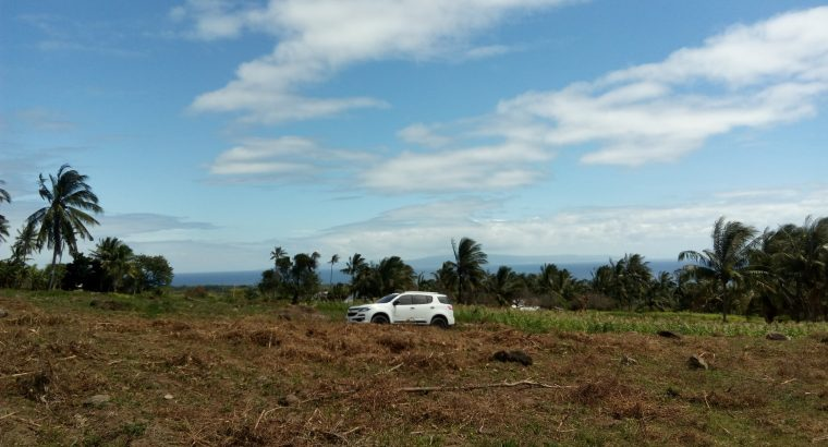 Dauin Ocean View Lots for Sale