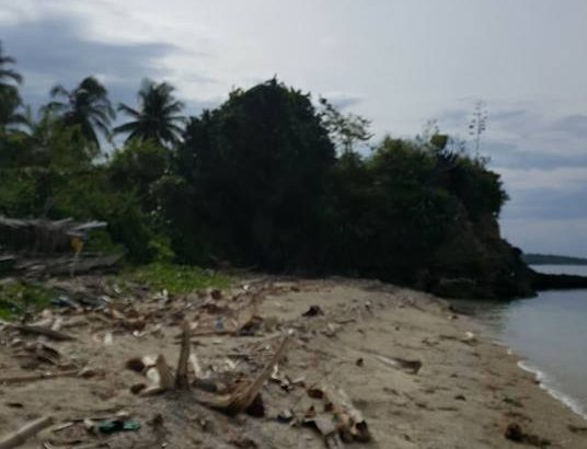 Siquijor Beachfront Lot For Sale