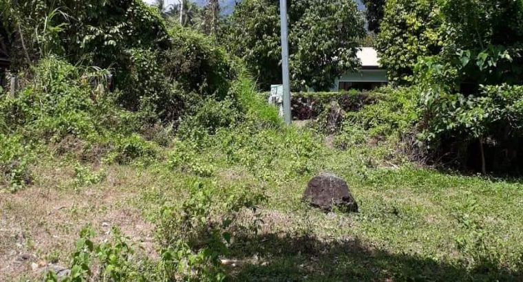 Lot For Sale near Downtown Valencia   Dumaguete Info Classifieds