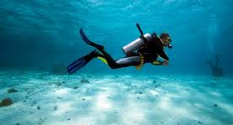 Siquijor Dive Shop Business Opportunity
