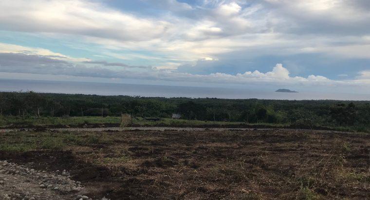 Dauin Ocean View Lots For Sale