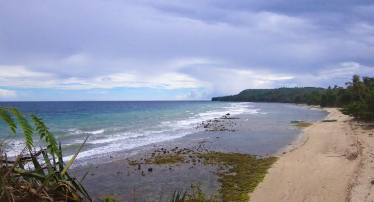 Siquijor Beach Side Lots for Sale