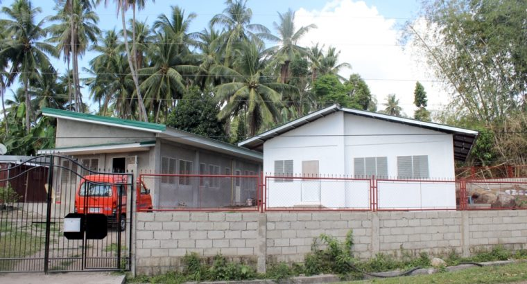 2 houses with lot for sale in Valencia/Jawa
