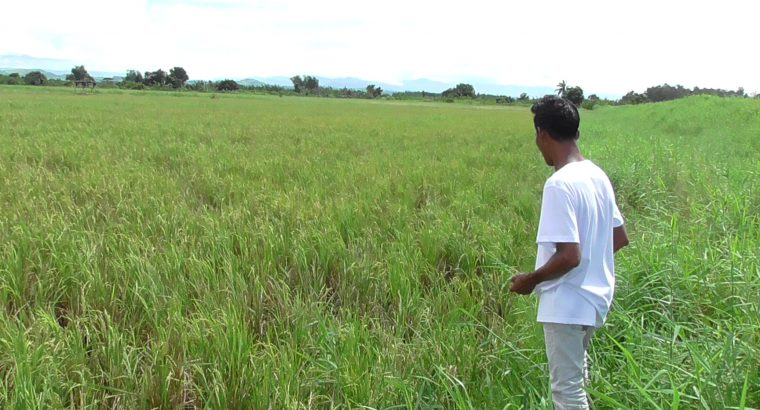 LOT FOR SALE IN NEGROS OCCIDENTAL