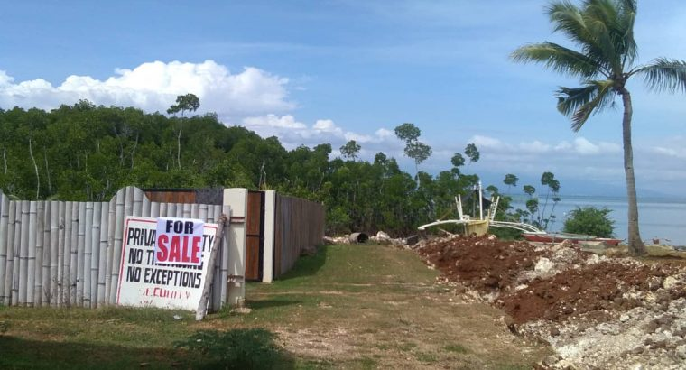 OCEAN FRONT HOUSE AND LOT FOR SALE
