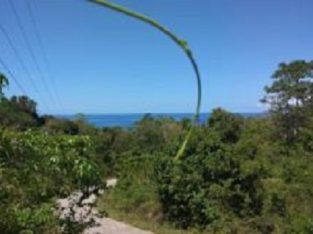 OCEAN VIEW LOT FOR SALE SAN JUAN SIQUIJOR