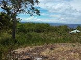 OCEAN VIEW LOT FOR SALE IN SAWANG, SAN JUAN SIQUIJOR