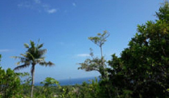 OCEAN VIEW LOT FOR SALE IN SIQUIJOR