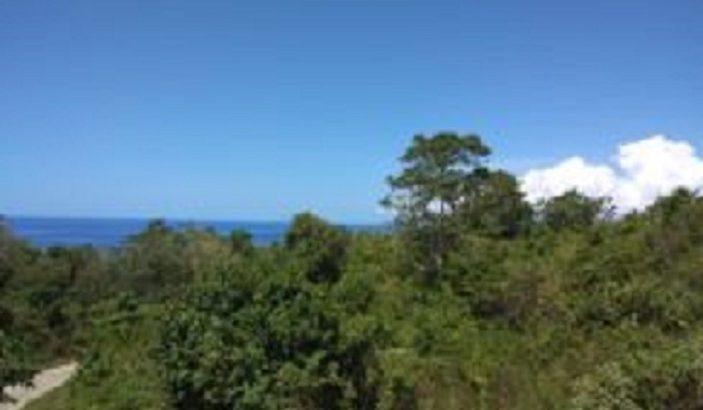 OCEAN VIEW LOT FOR SALE SAN JUAN SIQUIJOR