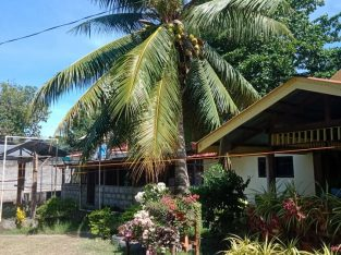 LOT FOR SALE WITH HOUSE ALONG NATIONAL HIGHWAY