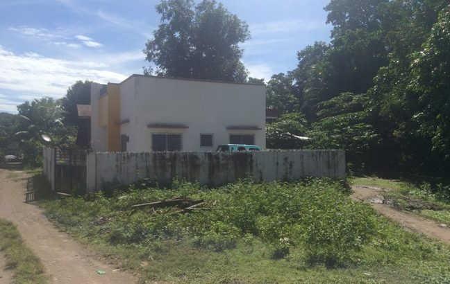 Duplex House With Lot Of Space To Rent