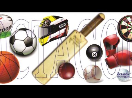 octagon sports bar header image