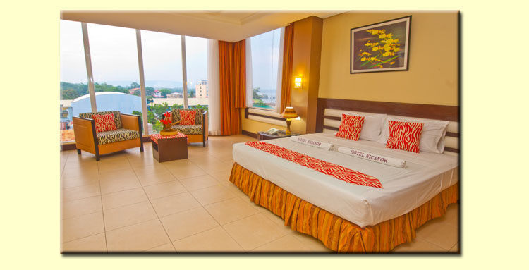 Hotel Nicanor Suite