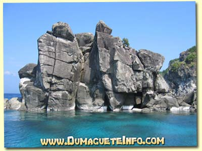 Apo Island Rock Formations