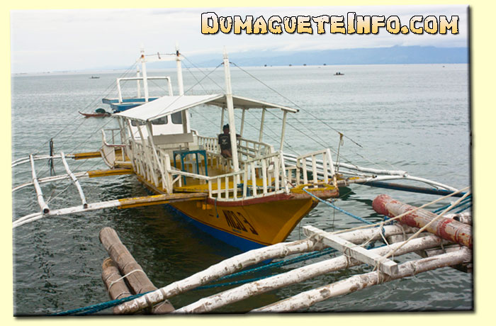Rental Boat for Dolphin Watching in Bais City