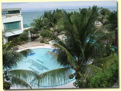 Bohol Tropics