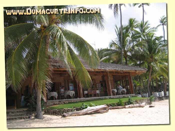 coco grove restaurant