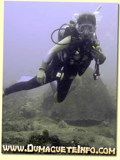 diver in sumilon