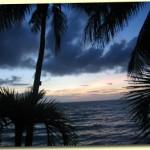 palm-trees-sunset