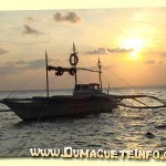 sunset-apo-island