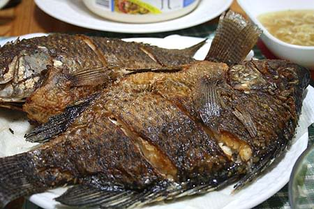Fried Tilapia in Dumaguete City